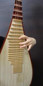 中国琵琶Ⅱ